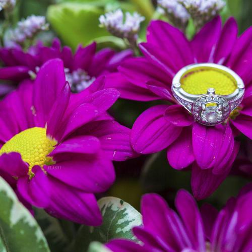 טבעת הנישואין